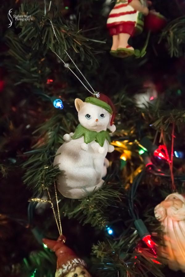 Christmas:  December 25, 2019: 9131