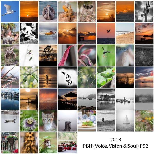 2018 By Heart P52