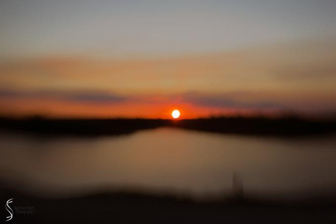 A.R.M Loxahatchee National Park: February 239, 2017: 8396